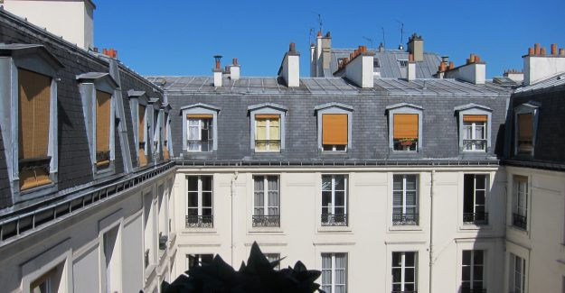 view over the Parisian rooftops